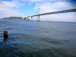 So this is the less infamous Bay Bridge. Still pretty cool, but doesn't get the attention of it's cousin the Golden Gate. Both built the same year - 1937.