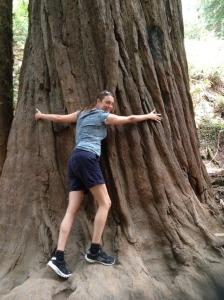 Karen hugging a very large redwood.