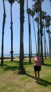 More palms.