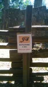 rattlesnake warning